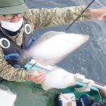"<span class=""title"">10/16(土)室蘭沖マガレイ</span>"